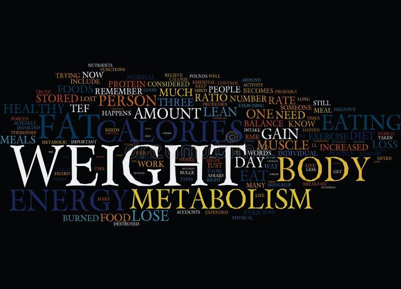 Seus metabolismo e conceito gordo da nuvem da palavra do fundo do texto da perda ilustração do vetor