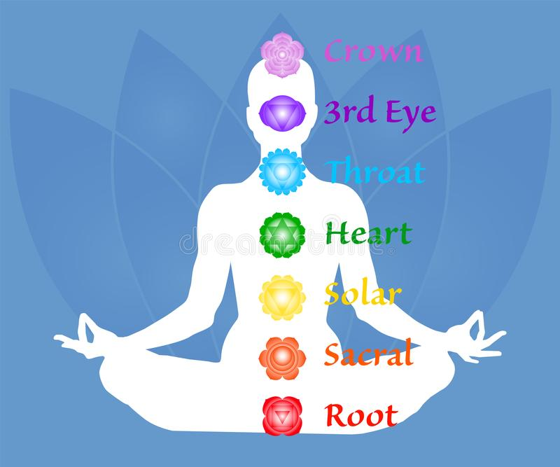 The seven chakra names map. Famale body in lotus yoga asana on blue petals background. Root, Sacral, Solar, Heart, Throat, 3rd Eye vector illustration