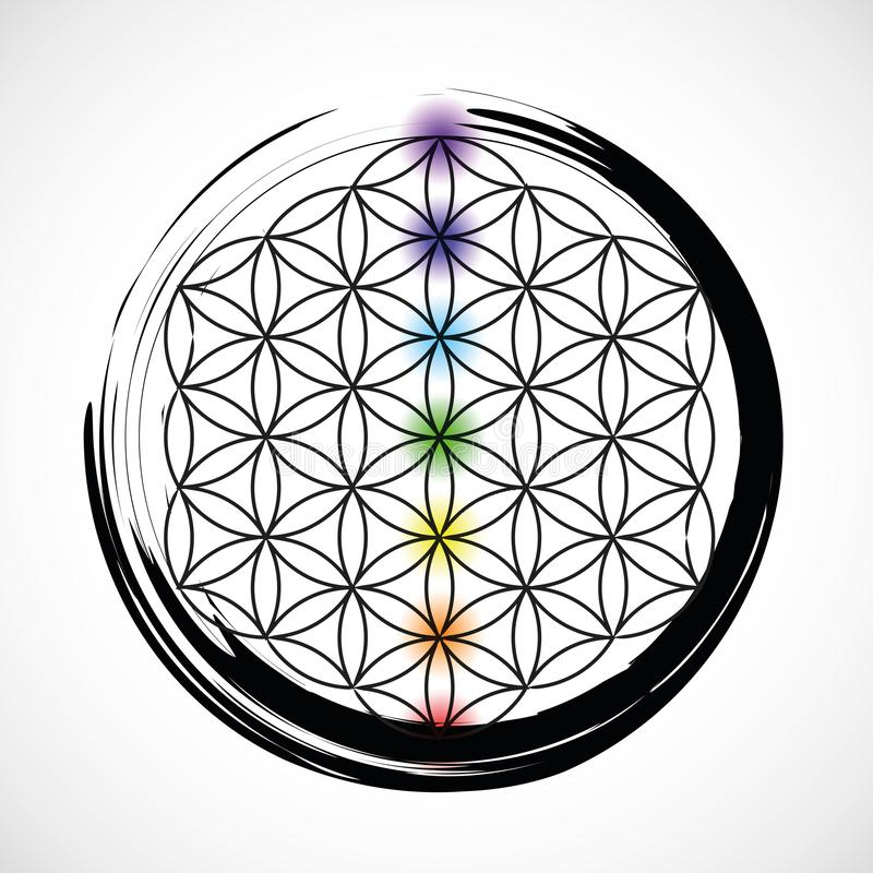 Seven chakras and flower of life vector illustration