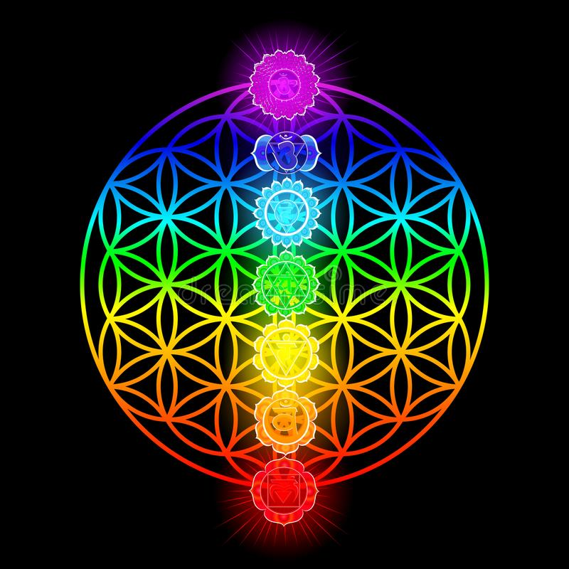 Seven chakras and flower of Life stock illustration