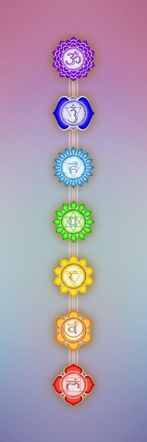 Seven Chakras. Illustration of the seven chakras vector illustration