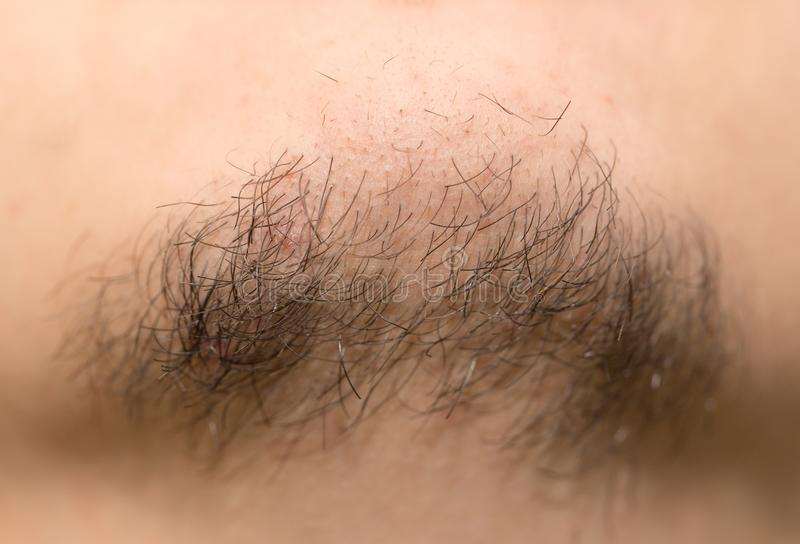 Seven Day Old Beard. Seven day old beard on a Caucasian male. Macro close up. royalty free stock photography