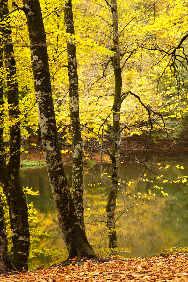 Seven Lakes Royalty Free Stock Image