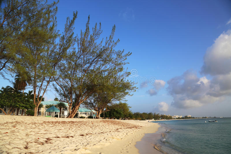 Seven Mile Beach at the Grand Cayman Island royalty free stock images