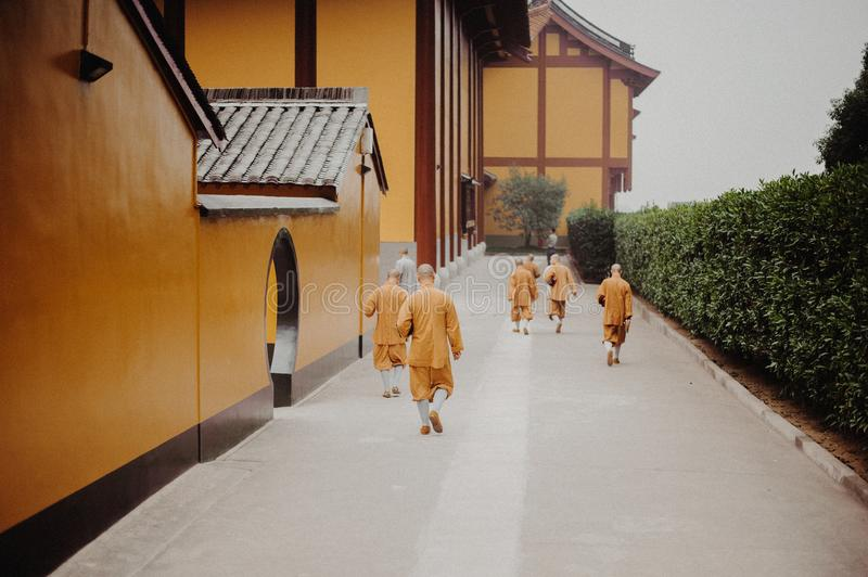 Seven monks in orange robes walking in Lufeng Temple stock photo