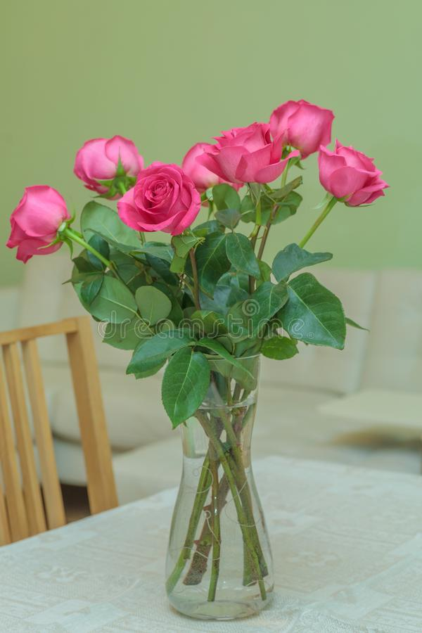 Seven pink roses stock photo