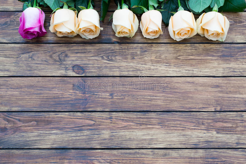 Seven roses on a wooden background stock photo