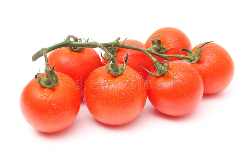 Download Seven tomatoes with drops stock image. Image of freshness - 5300009
