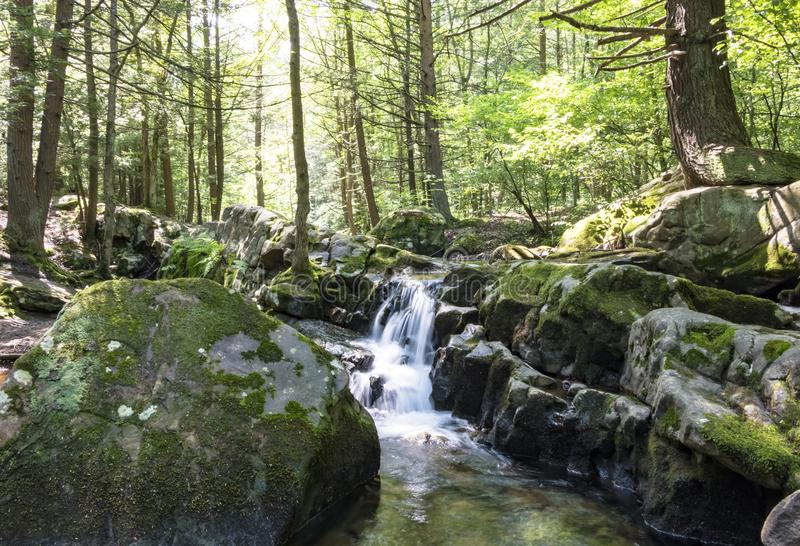 Seven Tubs Waterfall Rocky Forest Stream royalty free stock photos