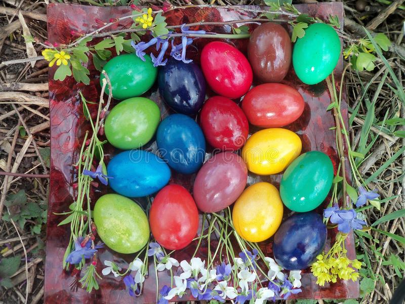 Our Easter eggs in 2015 stock photos
