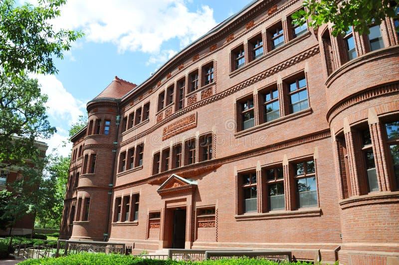 Sever Hall in Harvard Yard, Harvard University. Cambridge, Massachusetts, USA stock image