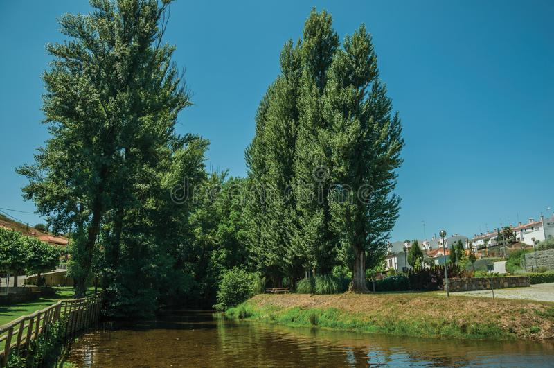 Sever River among trees in Portagem. View of Sever River among leafy trees and undergrowth in a sunny day at Portagem. A district of Marvão at the bottom of a royalty free stock photography