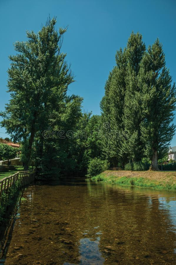 Sever River among trees in Portagem. View of Sever River among leafy trees and undergrowth in a sunny day at Portagem. A district of Marvão at the bottom of a royalty free stock image