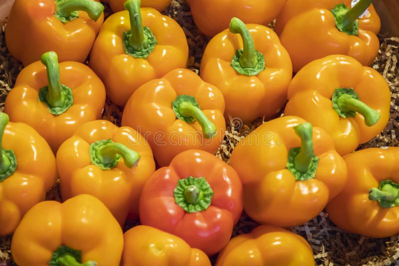 Several Delicious Orange Peppers Close Up royalty free stock images