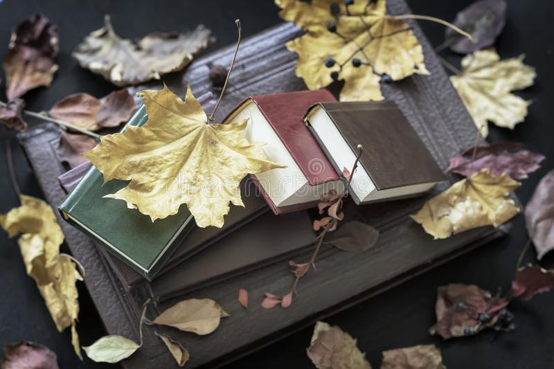 Several of different books close-up, top view, covered with dry autumn leaves, sunny fall day, vintage background. Several of different books close-up, top view royalty free stock images