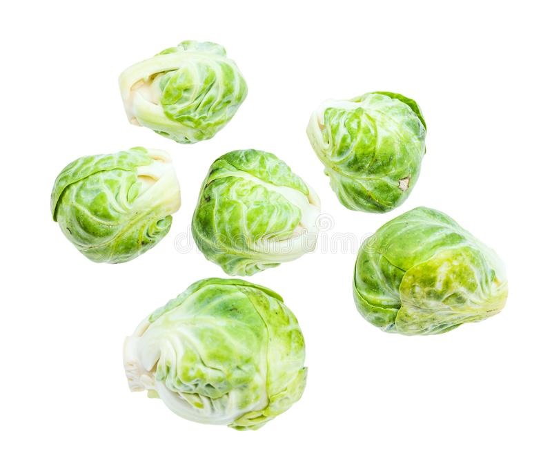 Several fresh brussels sprouts isolated on white stock image