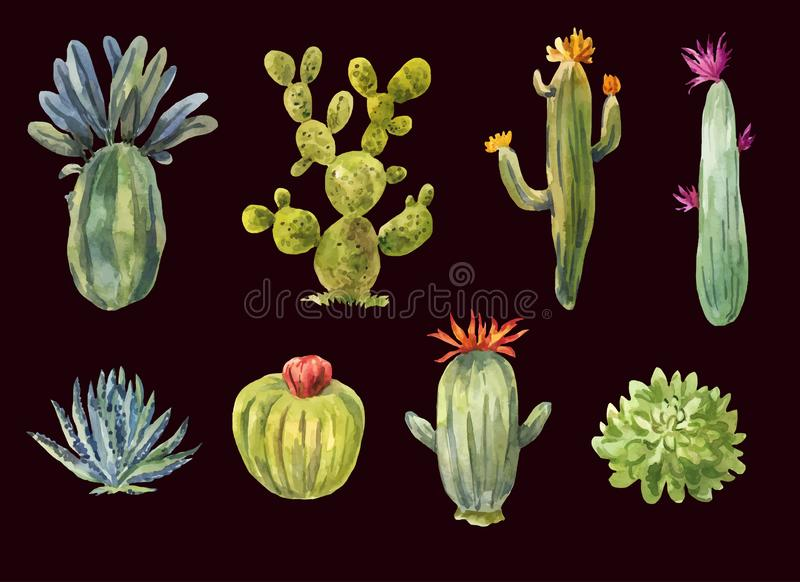 Several hand-drawn cacti. Illustration of succulents isolated on. Several hand-drawn cacti. Vector illustration of succulents isolated on white background stock illustration