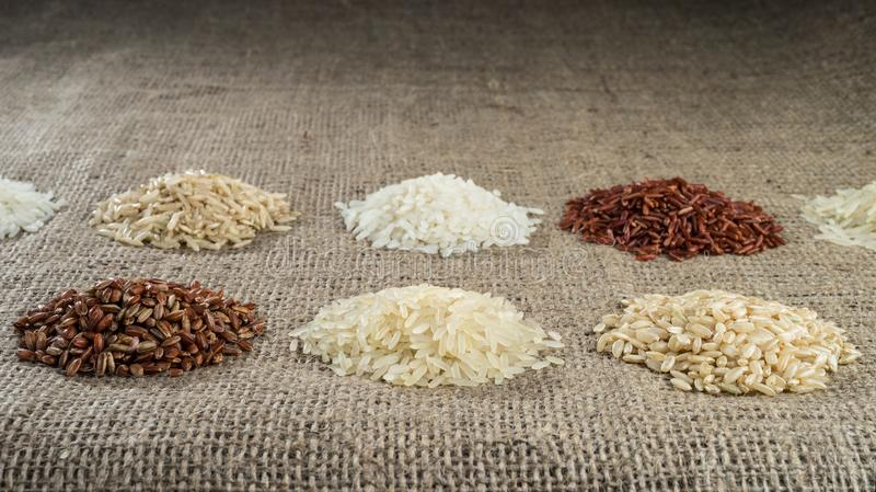 Several heaps of rice of different varieties on the background of sacking. stock image