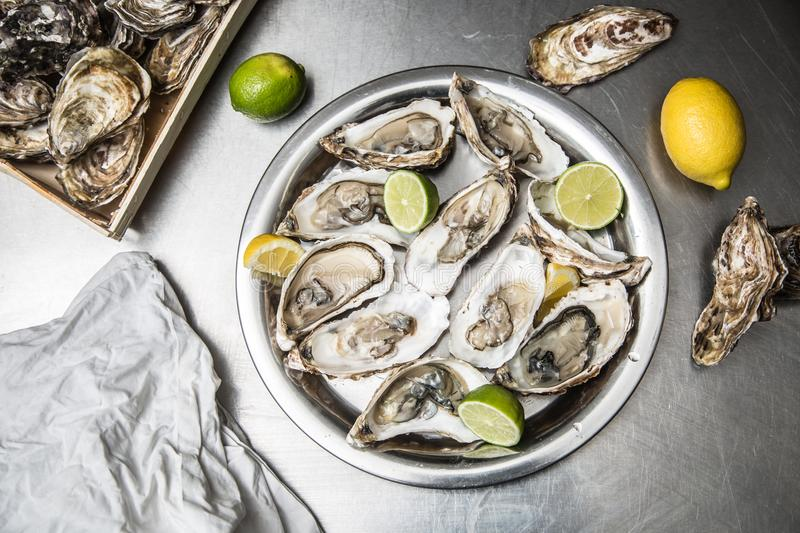 Several open oysters with lemon and lime royalty free stock images