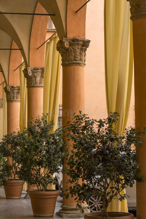 Several orange columns with yellow curtains and plants in pots royalty free stock photography