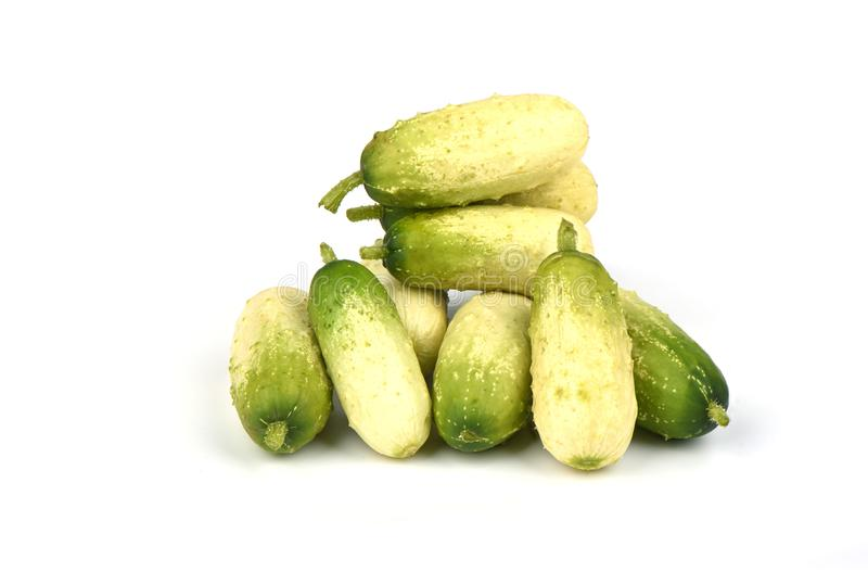 Several organic small cucumbers isolated on white background. stock photography