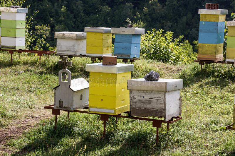 Several painted wooden bee hives in a orchard. Montenegro royalty free stock image