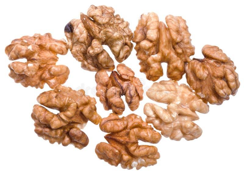 Several peeled walnut kernels isolated on white royalty free stock photos