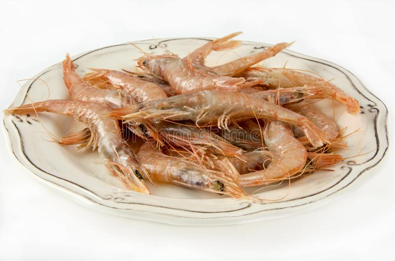 Several raw prawns stock image