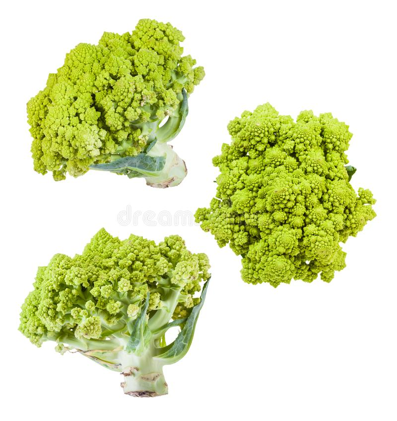 Several romanesco broccoli heads isolated on white royalty free stock photo