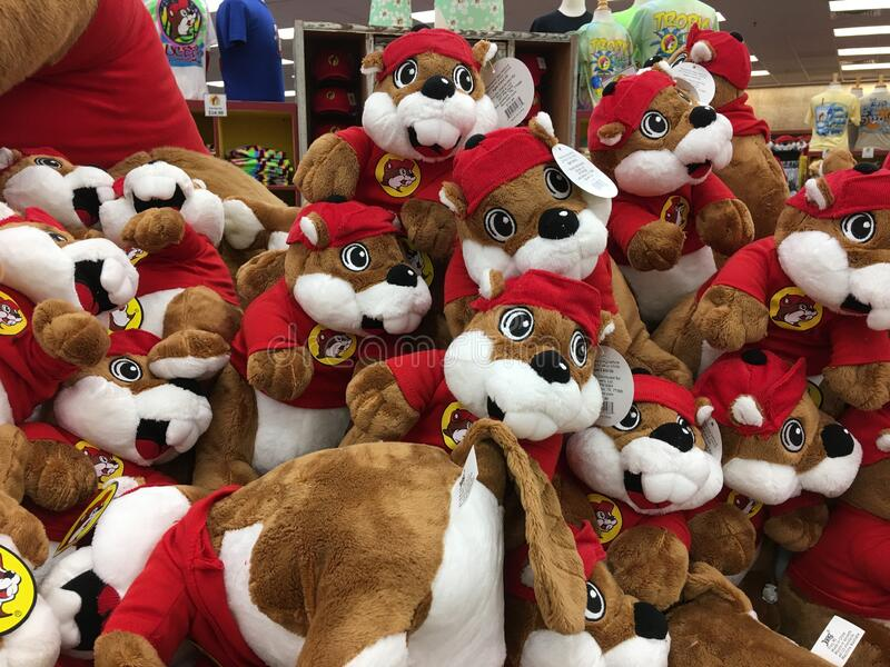 Stuffed Buc-ee Beaver Dolls in Buc-ee`s Convenience Store royalty free stock photos
