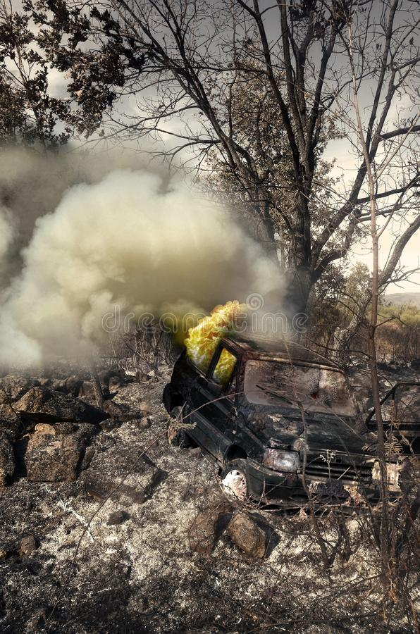 Destruction due to Summer Fire. Several trees and a field burned in summer, due to the carelessness of people. An old car is still burning there. The windscreen stock photography