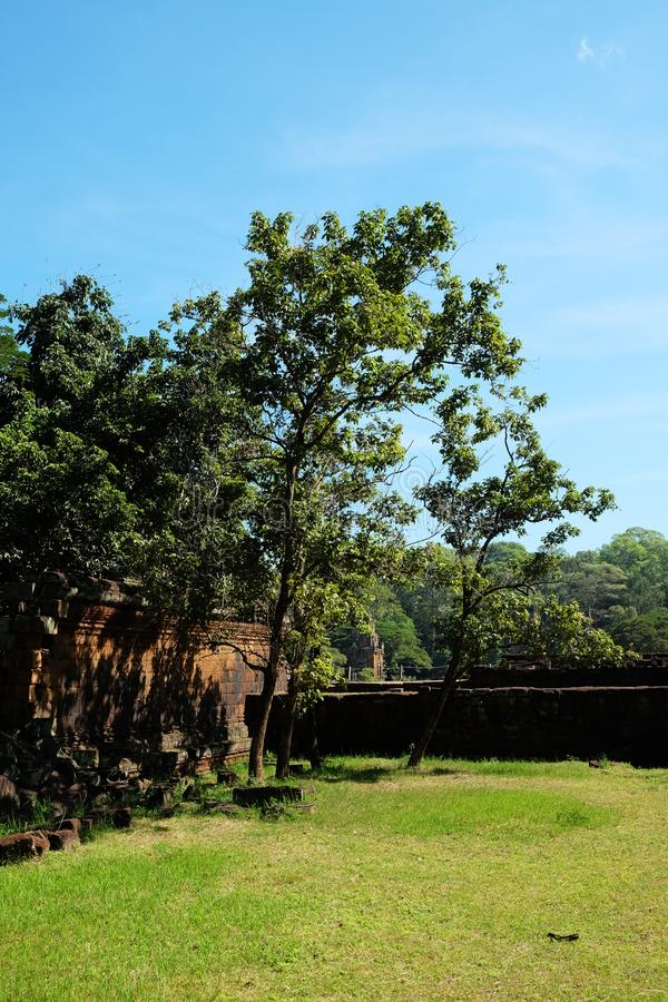 Several trees grow near an old dilapidated defensive wall. Clear blue sky and green lawn.  stock images