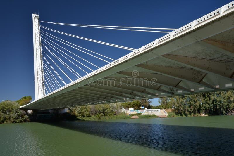 Sevilla, Andalusia, Spanje Alamillo brug door architect Santiago Calatrava stock foto