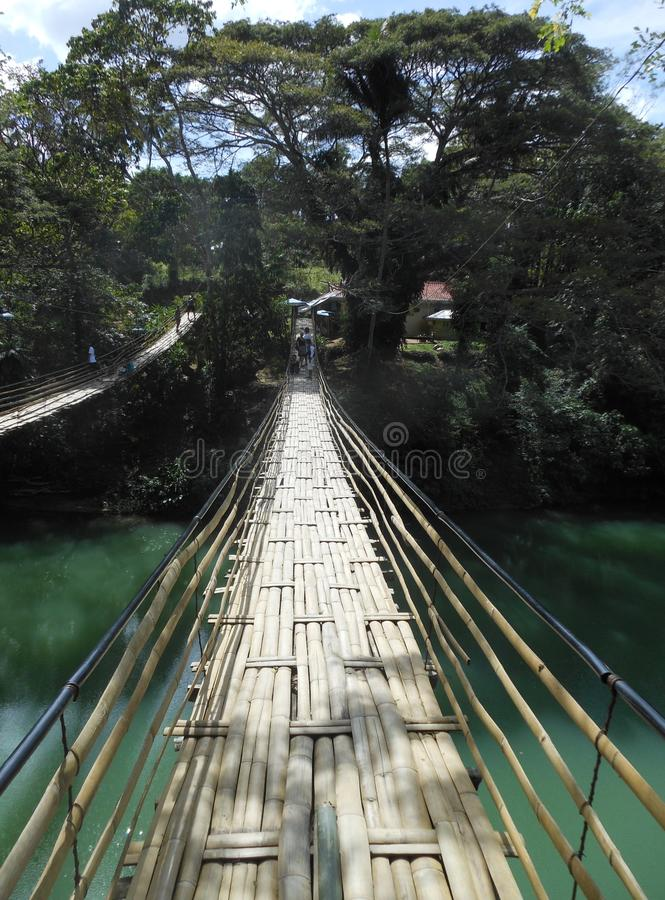 Sevilla Bamboo Bridge op Bohol filippijnen stock foto's
