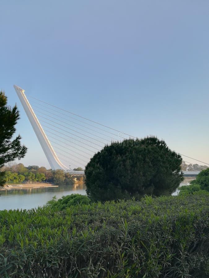 Sevilla& x27; s brug stock afbeeldingen