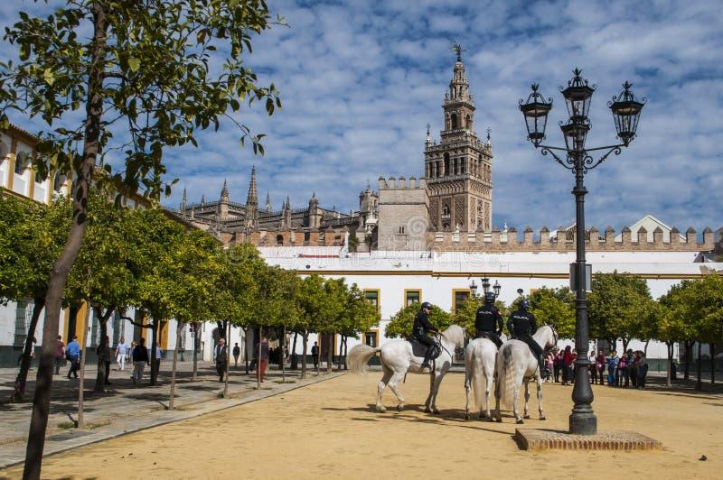 Sevilla, Sevilla, Spanje, Andalusia, Iberisch schiereiland, Europa, royalty-vrije stock foto's