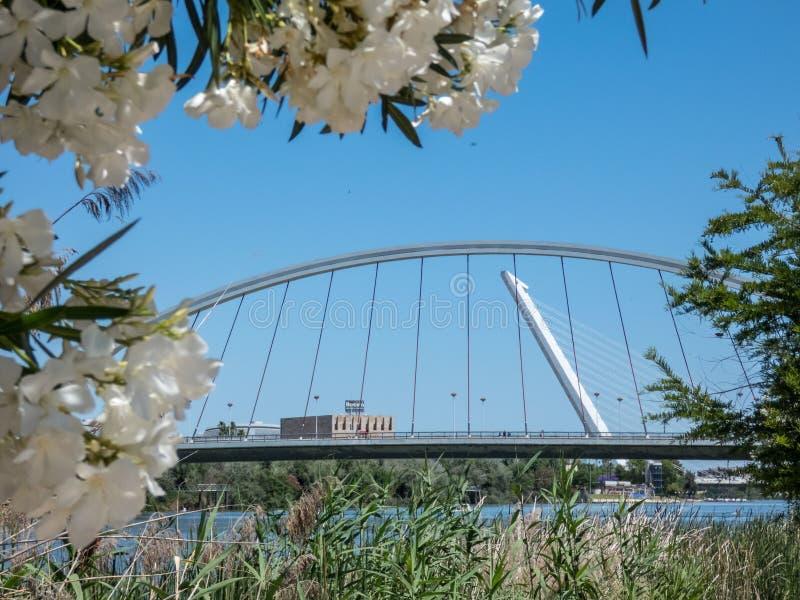 Sevilla, Spanien Barqueta-Brücke von Sevilla Brücke über Fluss Guadalqvivir Andalusien lizenzfreie stockbilder