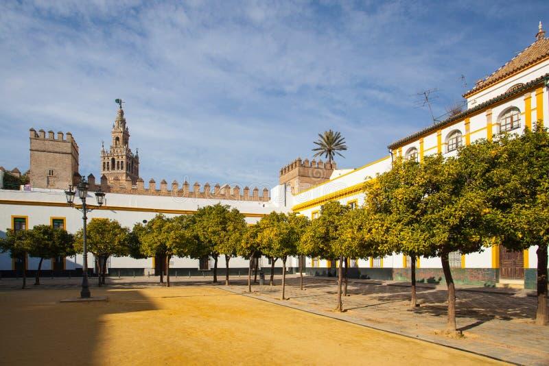 Seville domkyrkaGiralda torn från Alcazar av Sevilla Andalusi fotografering för bildbyråer