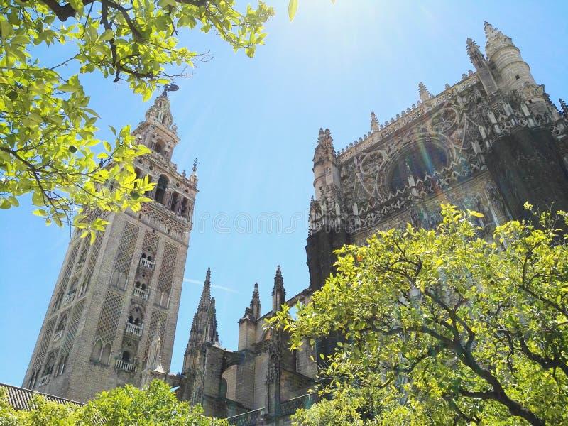 Seville Giralda & katedra zdjęcie stock
