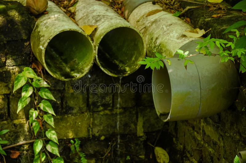Sewerage pipes located at the forest at the tropical island stock photo