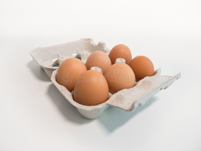 Sex ägg i en låda på en vit tabell, vinkelsikt royaltyfri bild