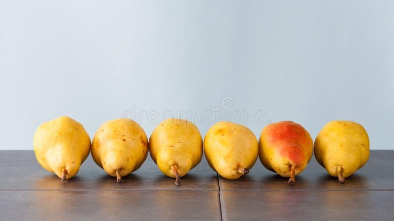 Sex corella päron fotografering för bildbyråer