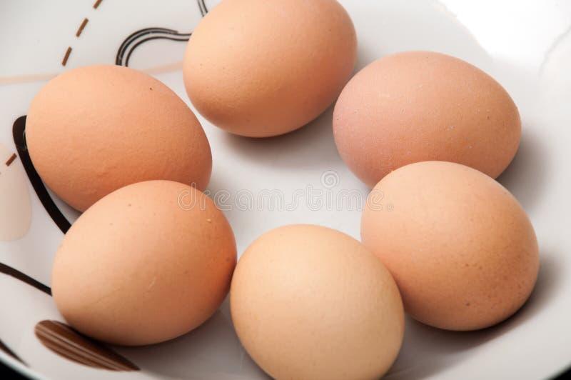 Sex kokta ägg i en platta royaltyfria foton