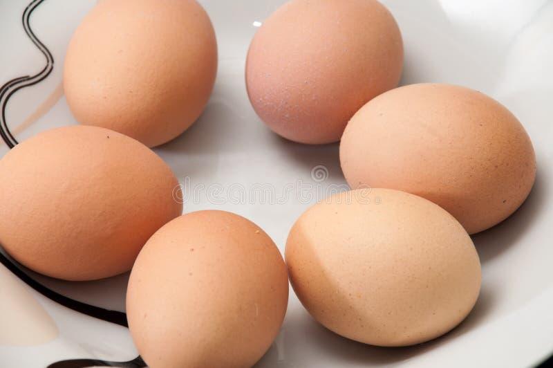 Sex kokta ägg i en platta arkivfoton