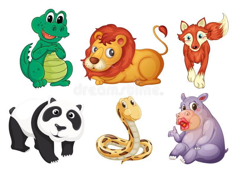 Sex olika sorter av djur royaltyfri illustrationer