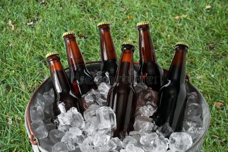 Sex packe av öl i ishink royaltyfri fotografi