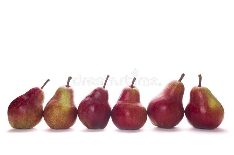 Sex röda päron på vit bakgrund arkivfoto