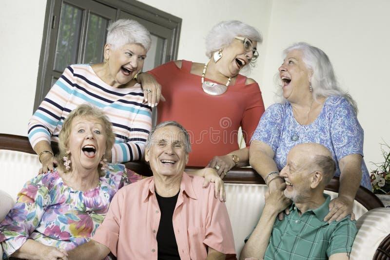 Sex roade höga vänner på en soffa royaltyfri foto