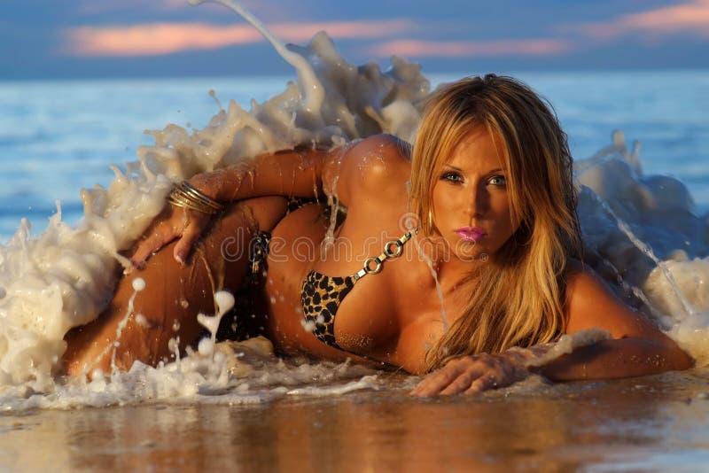 sexig bikiniflicka royaltyfri foto