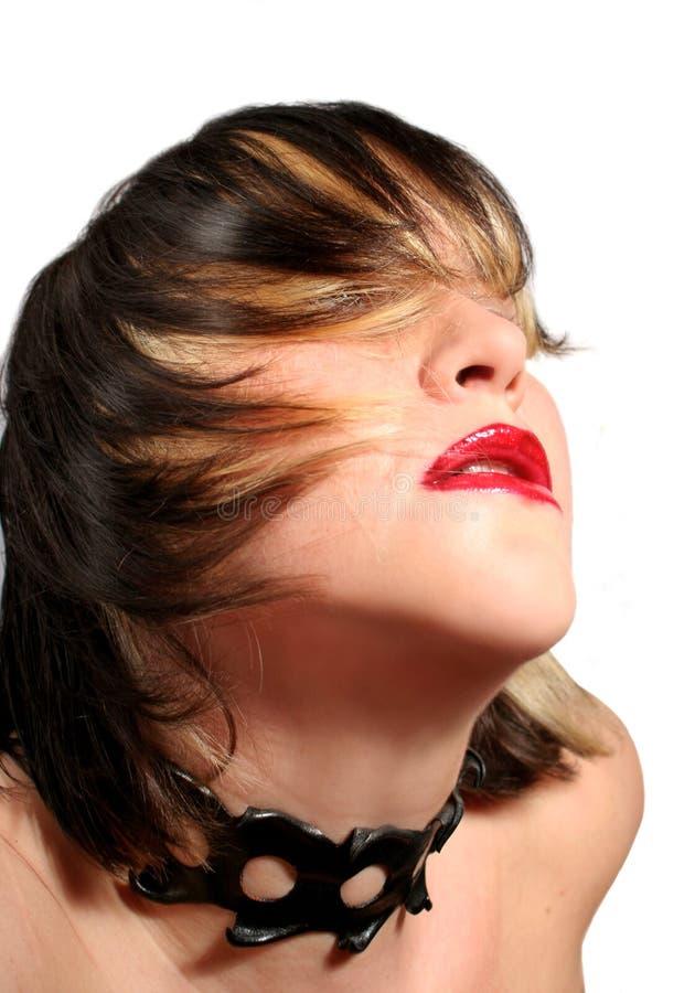 Download Sexig brunett fotografering för bildbyråer. Bild av makeup - 501447